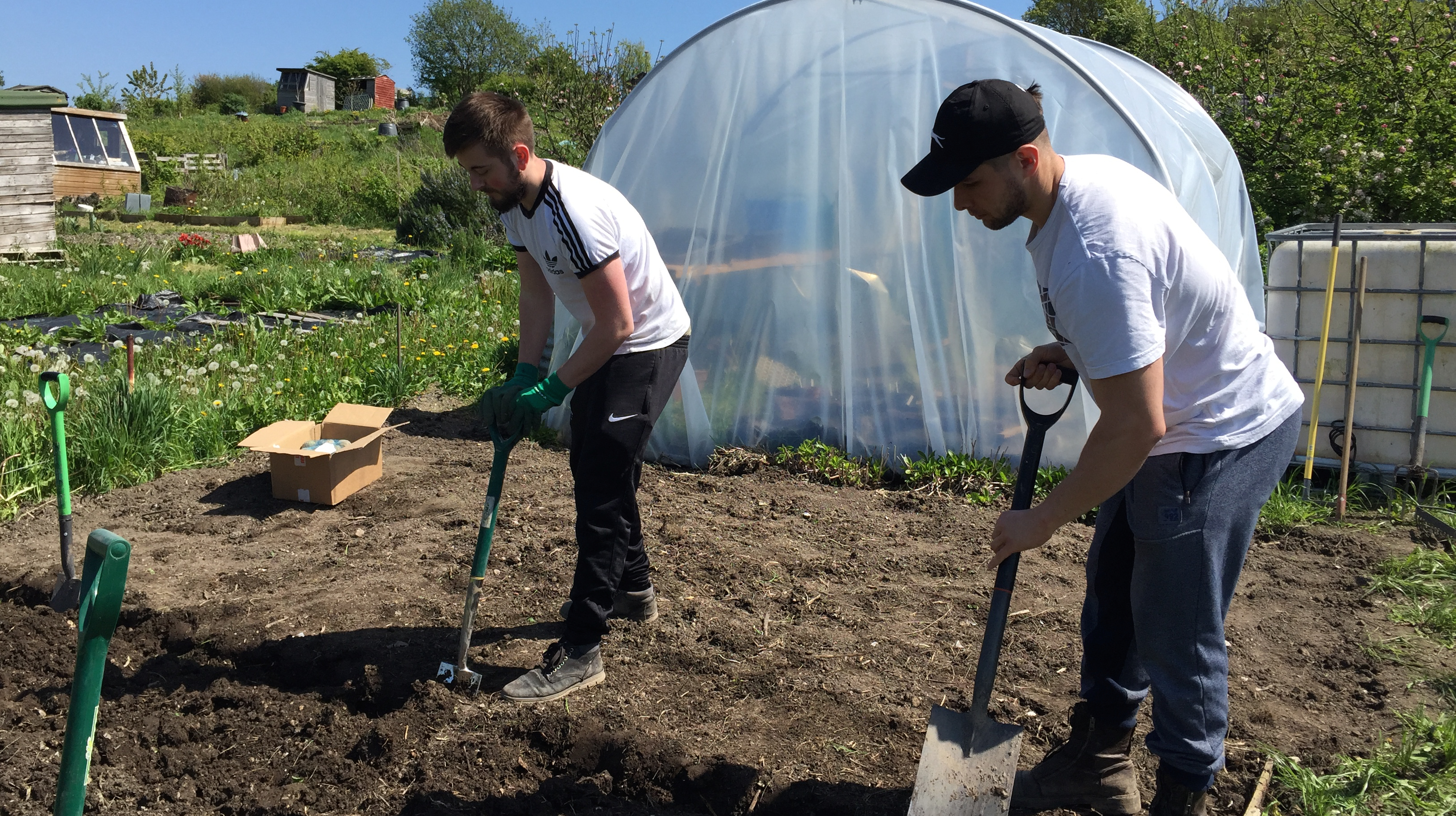 boys-digging